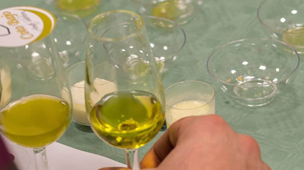 descubre los distintos tipos de aceite